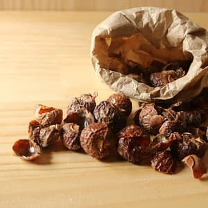 Loose Soap Nuts